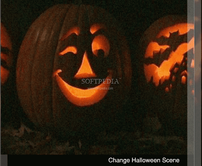 Funny Halloween Pumpkin Wallpapers