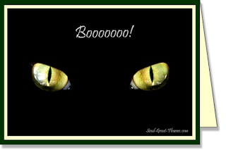 halloween black cat wallpaper
