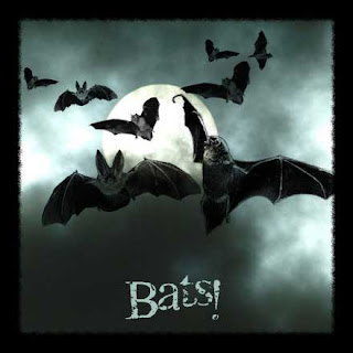 Download Screechy Bats Halloween Wallpaper