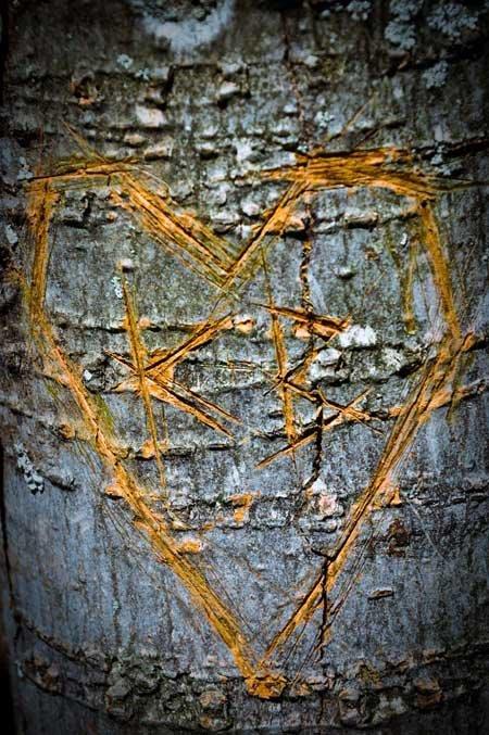 K + B = Love