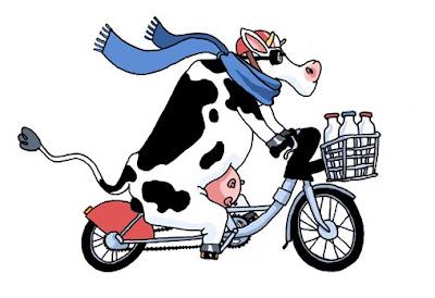 Rigolos gadgets traduction vache v lo - Image de vache drole ...
