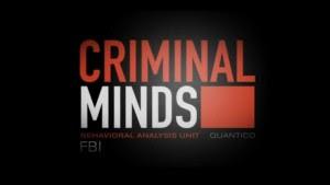 Criminal Minds Season5 Episode21 online free