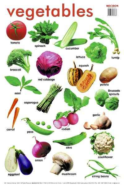 ralph curreys: List of vegetables with