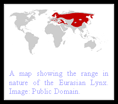 Eurasian Lynx Distribution