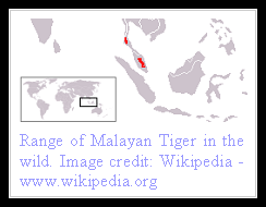 Malayan Tiger distribution