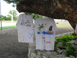 Arte del Palmar de Ocoa