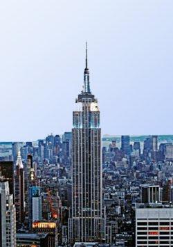 internship new york