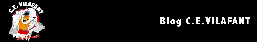 Bàsquet Vilafant