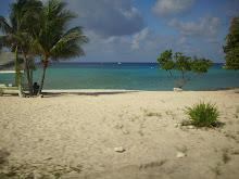 Grand Cayman Island,  2010