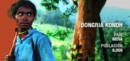 3 AÑOS B DONGRIA KONDH
