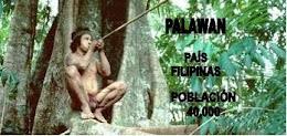 3º B PALAWAN