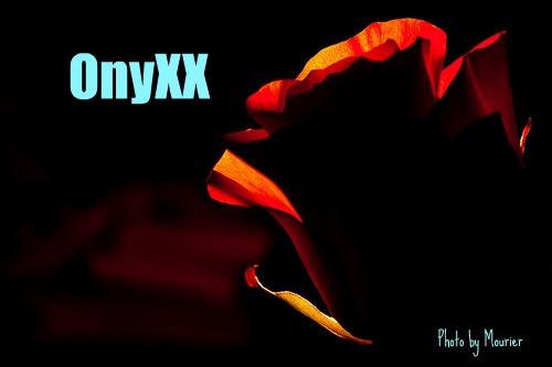OnyXX