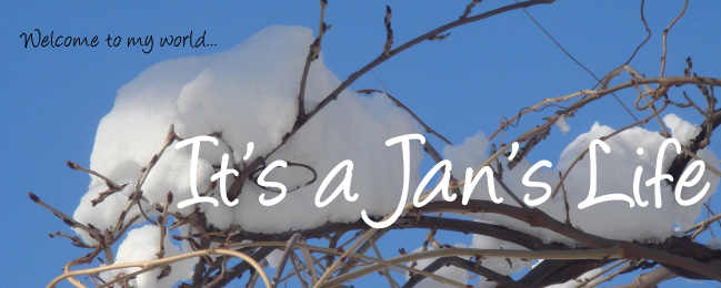 It's a Jan's Life