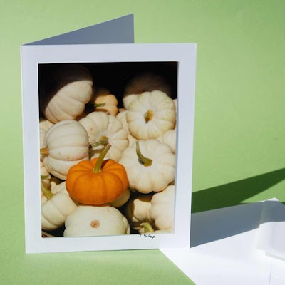jeanne-selep-imaging jack-b-little pumpkin card