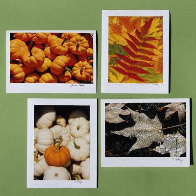 jeanne-selep-imaging autumn card package