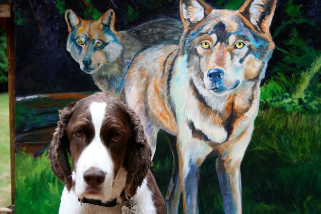 Velvet Dog Studio