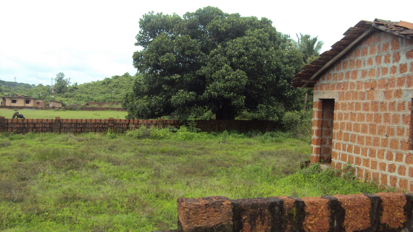 Plots And Houses In Goa Available