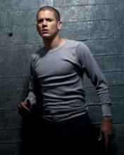 TV serija Zakon braće, Prison Break download besplatne slike pozadine za mobitele