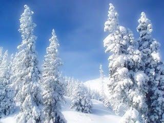 Snijeg, borovi, planine, zima, led download besplatne pozadine slike za mobitele