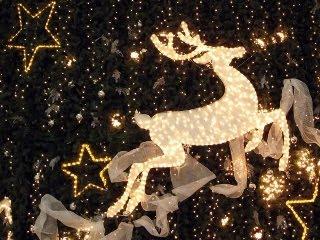 Jelen kao Božićni ukras download besplatne pozadine slike za mobitele