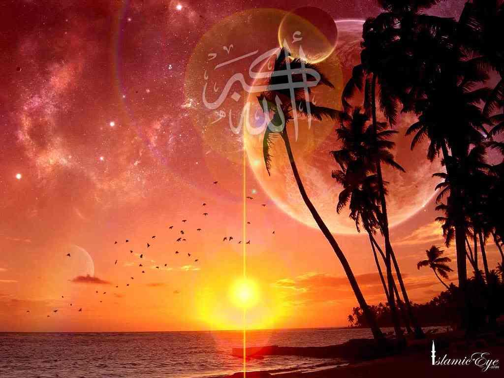 http://1.bp.blogspot.com/_9EDTPO11FCg/TQ2Tcb0_seI/AAAAAAAAACg/SQDMZJzpNic/s1600/wallpaper4.jpg