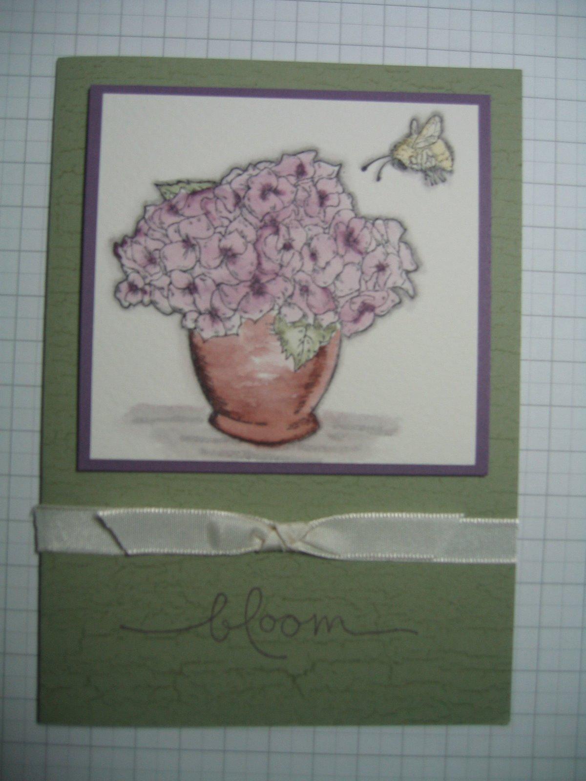 [plum+bloomin+wc]