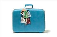 Get Up N Go Trvl Royal Caribbean Luggage Tags