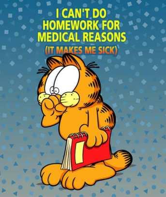 I do my homework in the morning