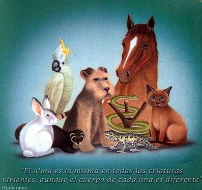los animales se les: