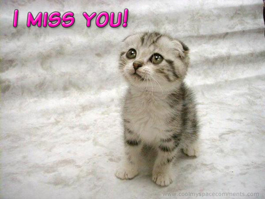 miss you quotes with pictures. miss you quotes