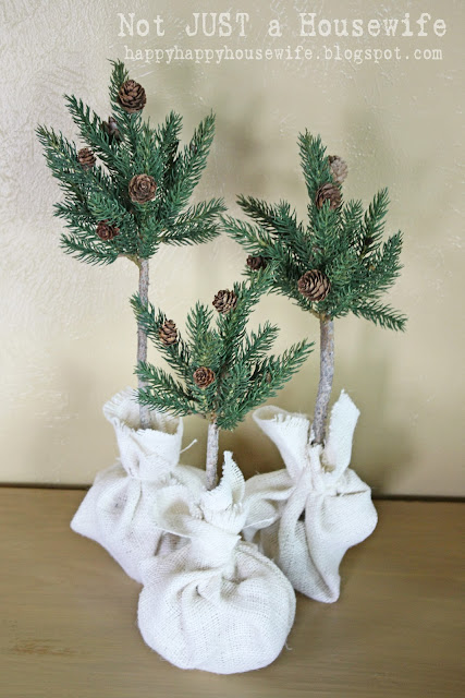 13 Pine Tree Topiary Tutorial