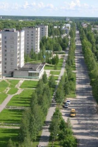 perviy-anal-odnoy-suchki-lyubitelskaya-semka