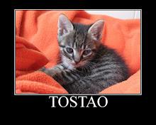 Tostão - Adoptado pela Carolina! (Junho de 2009)