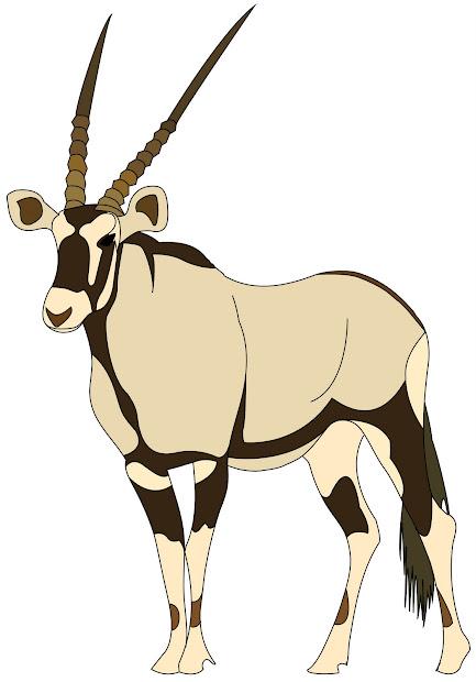technical prowess gemsbok antelope