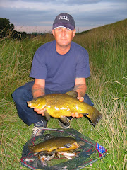 Tench from the Vernats drain in Surfleet