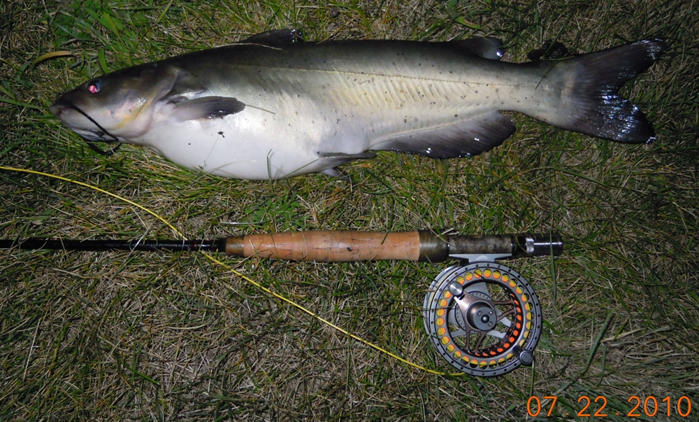 Fishndave warmwater fly fishing around central iowa for Fly fishing iowa