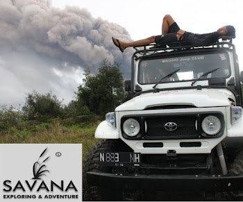 SAVANA VEHICLE
