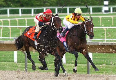 Horserace 520133030 Mira las carreras de caballos online en Live Video Betfair