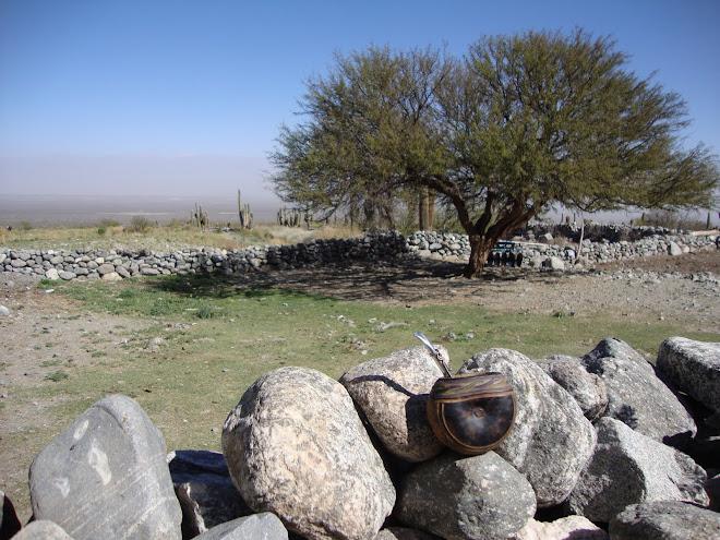 un mate en la pirca en las alturas de los Valles Calchaquies