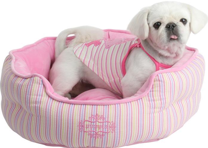 Accesorios baratos para perros adiestramiento de perros for Accesorios para mascotas