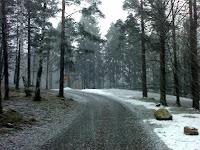 lisää lunta