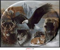 Animais toten