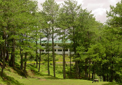 Sagada St. Mary's School