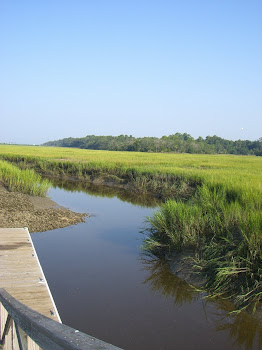 A Local Marsh