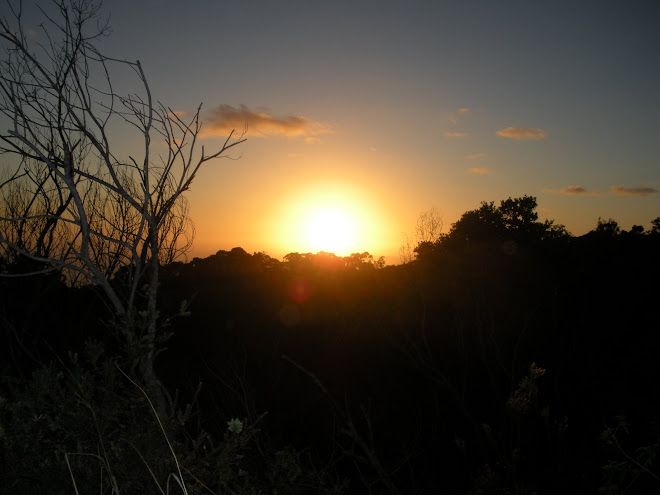 A Beautiful Sunset at Waimea Canyon