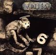 the pixies monkey