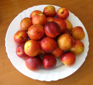 nektarini