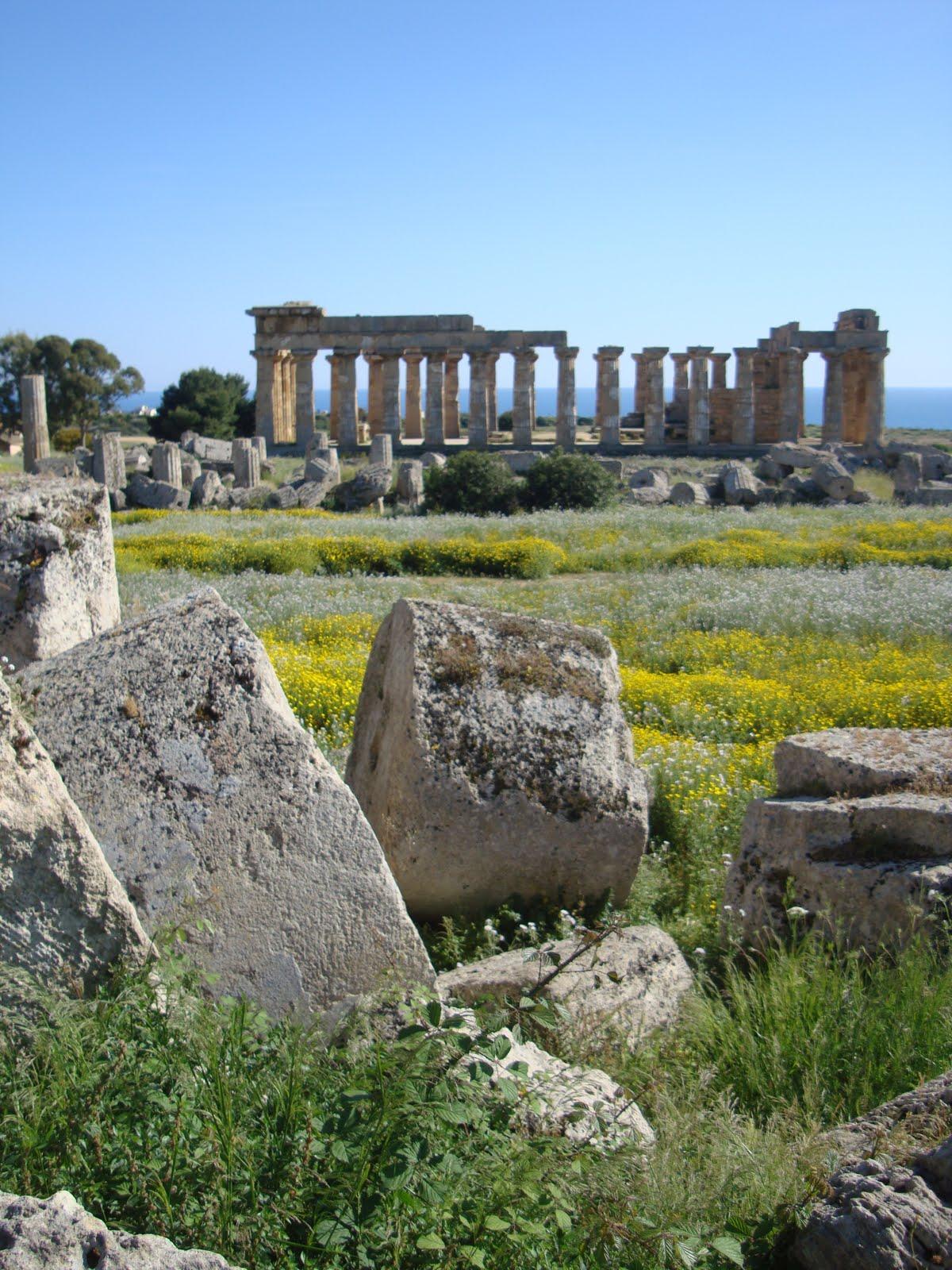 hortibus voyage palais et jardins prives de sicile parc archeologique de selinonte. Black Bedroom Furniture Sets. Home Design Ideas