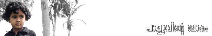 പാച്ചുവിന്റെ ലോകം... ആച്ചിയുടേയും