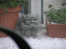 The Weather Gargoyle (WG)